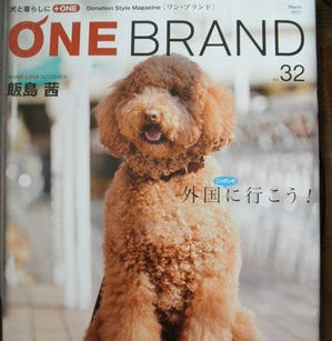 Onebrand32_2