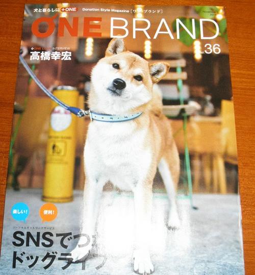 Onebrand36